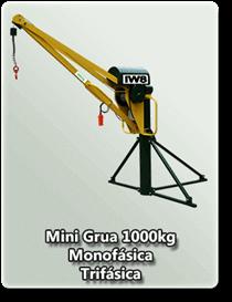 Mini Grua 1000kg
